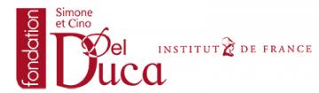 Fondation Simone et Cino del Duca de l'Institut de France